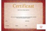 Certificaat volwassenen - opzet 2